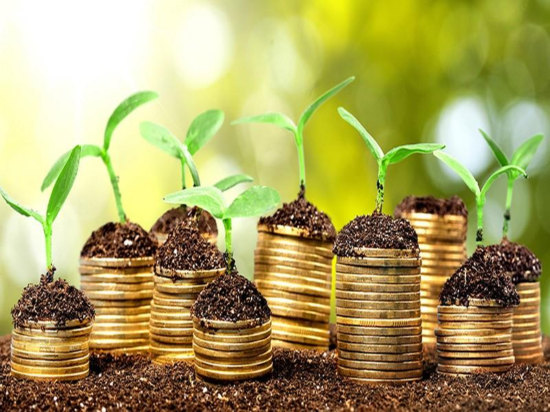 Green bonds : L'AMMC lance son guide