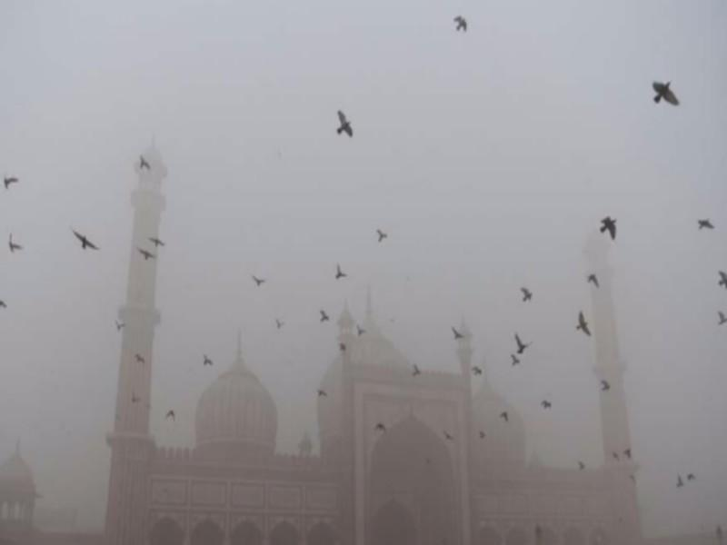 Pollution à New Delhi : L'urgence de mesures concrètes de la part de la COP23