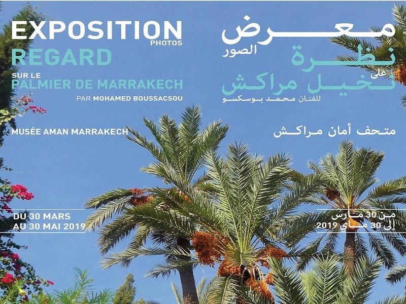 Exposition Photos « Regard sur le palmier de Marrakech »