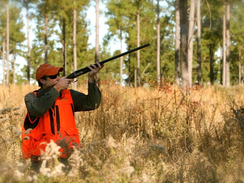 National Report on Hunting